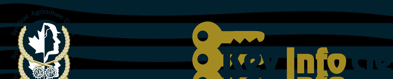 'KeyInfo' logo